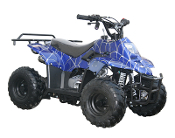 COOLSTER ATV-110cc BLUE-SPIDER THIS PRICE LOCAL PICK UP ONLY